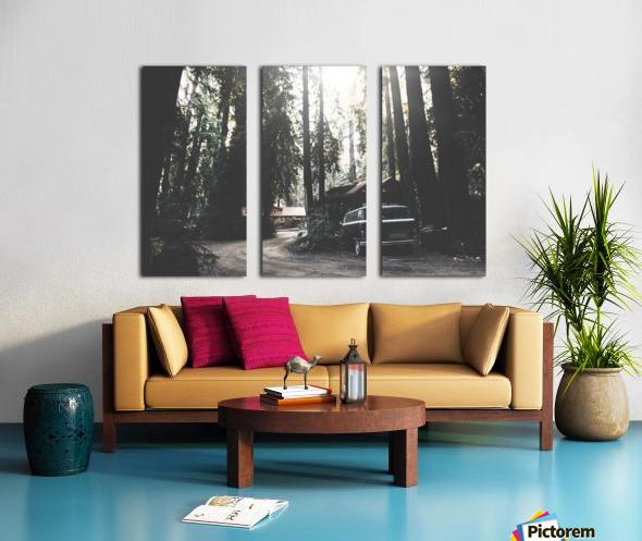 Big Sur Camping Split Canvas print