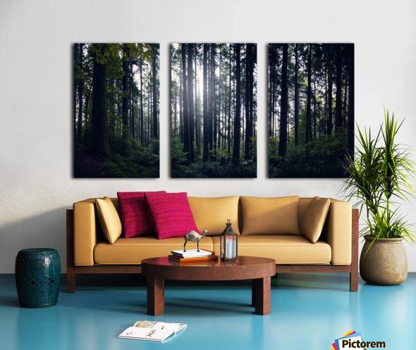 Spencer Butte Forest Split Canvas print