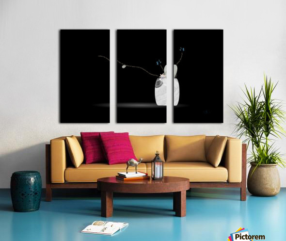 Frosted Split Canvas print
