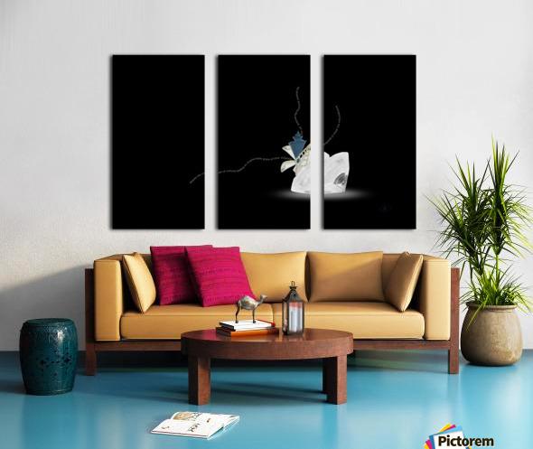Egress Split Canvas print