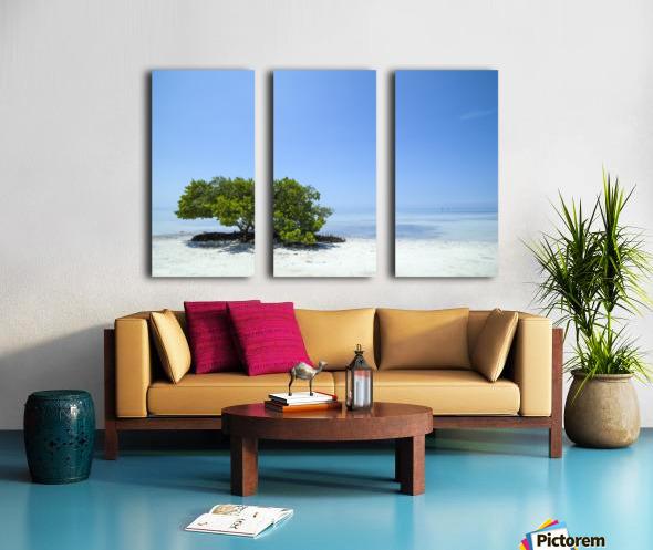 FLORIDA KEYS Lonely Tree Split Canvas print