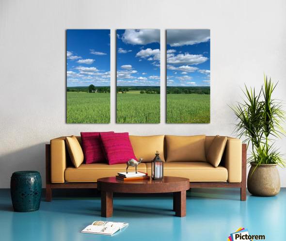 My Blue Heaven Split Canvas print