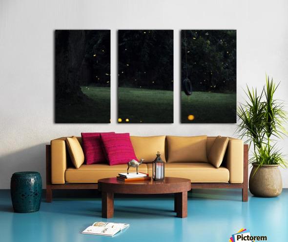 Fireflies in Pennsylvania Split Canvas print