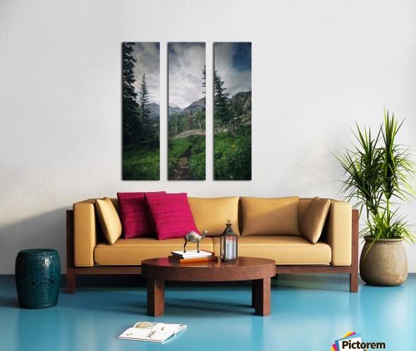 Rocky Mountain National Park Split Canvas print