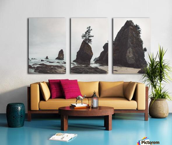 Shi Shi Beach Split Canvas print