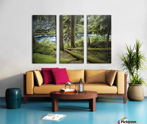 The Mckenzie River Split Canvas print