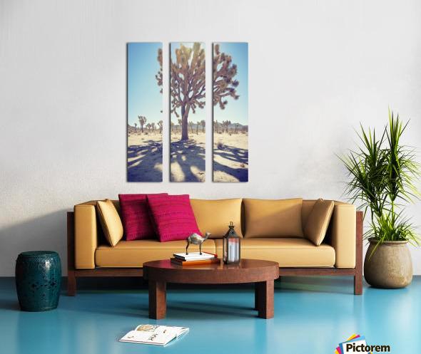 Joshua Tree National Park Split Canvas print
