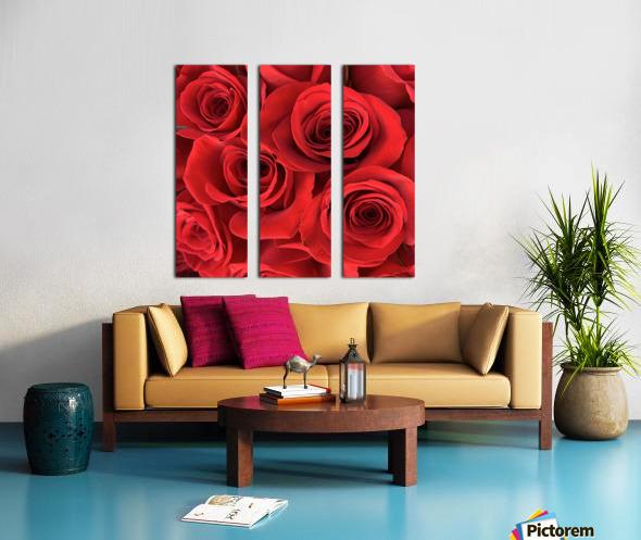 Eternal Roses Split Canvas print
