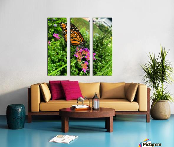 Butterfly Bliss  Split Canvas print