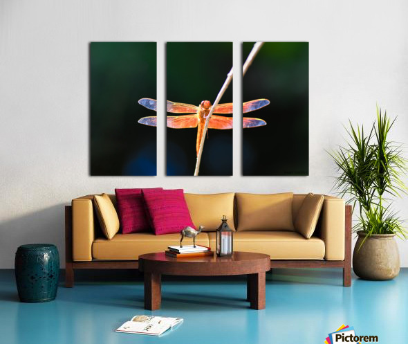 GOOD VIBES ONLY collection 1-4 Split Canvas print