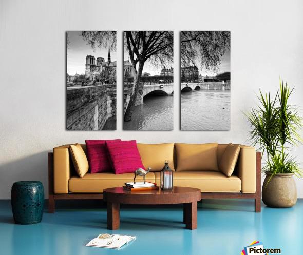 Seine river flood Toile Multi-Panneaux