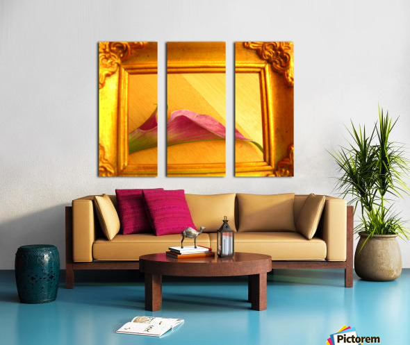 Gilded Lilly  Split Canvas print