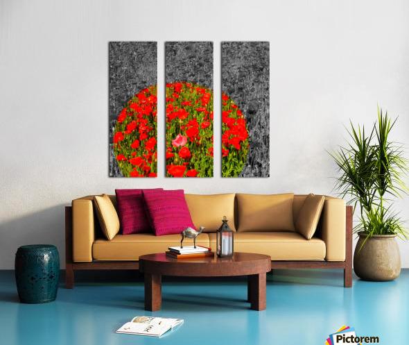 Poppy Popper Popping Split Canvas print