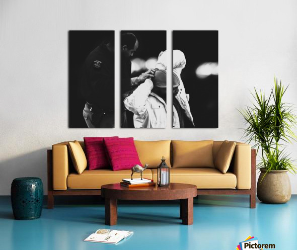 Detain and Search Split Canvas print