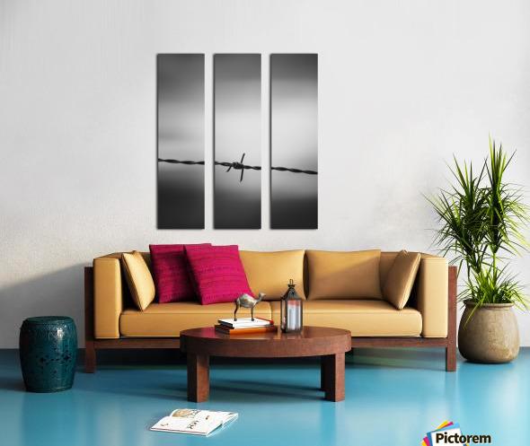 Twisted Split Canvas print