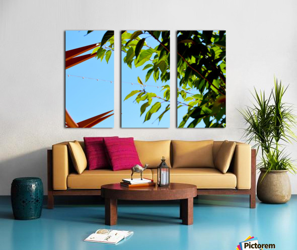 Light Up Split Canvas print