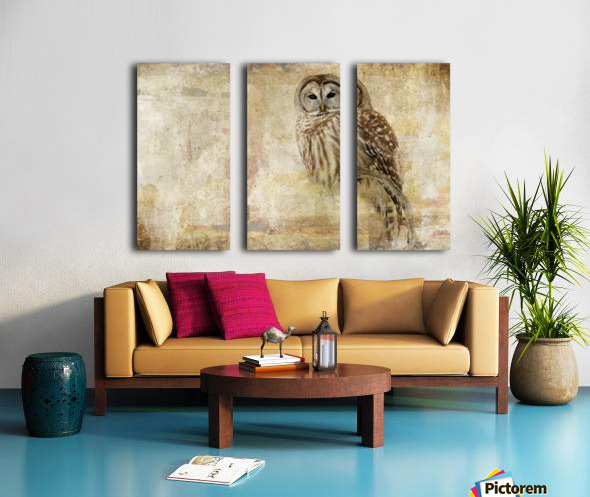 Strix Varia Split Canvas print