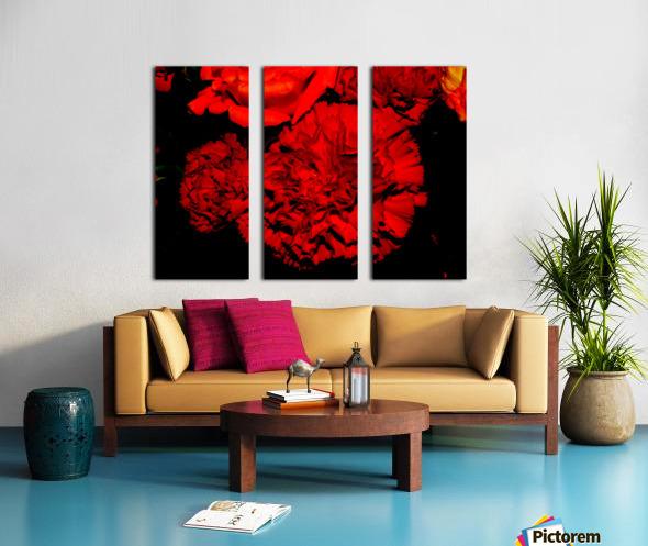 sofn ED31563A Split Canvas print