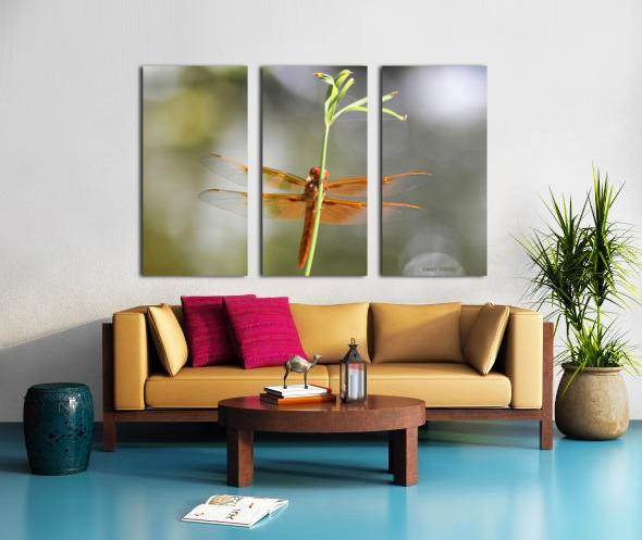 PEEK-A-BOO  Collection 1-4 Split Canvas print