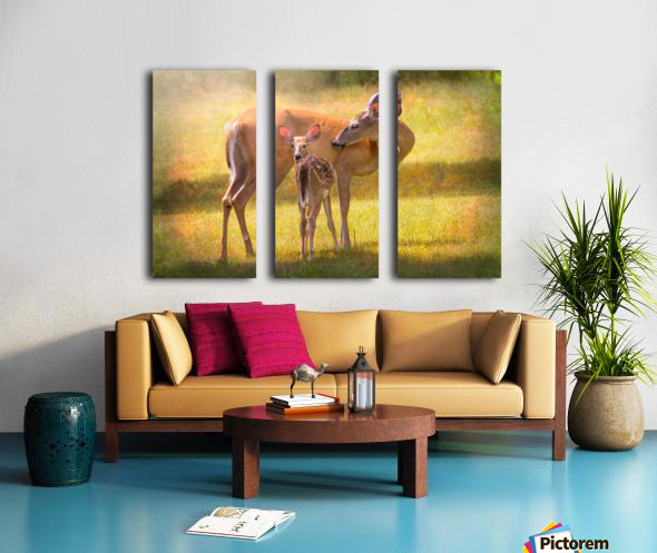 Doe with fawn looking back Split Canvas print