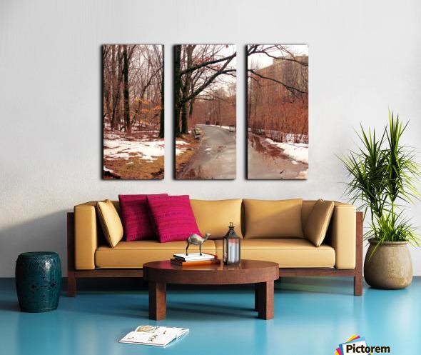 Park Path  Split Canvas print