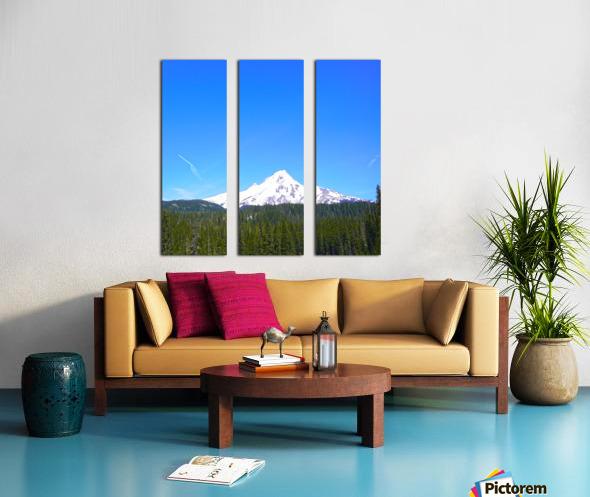 Mount Hood in Spring Split Canvas print