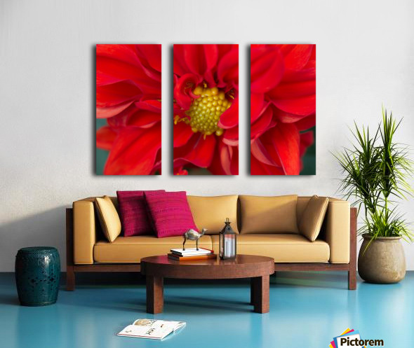 Red and Yellow Split Canvas print