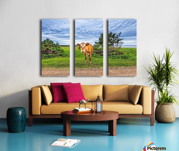 Moo Split Canvas print