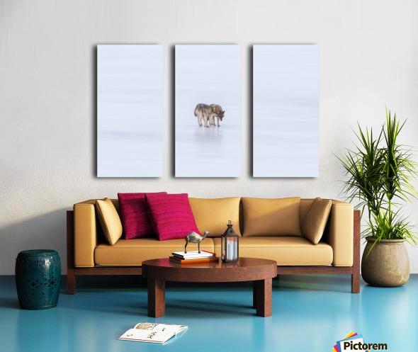 Two Coyote Split Canvas print