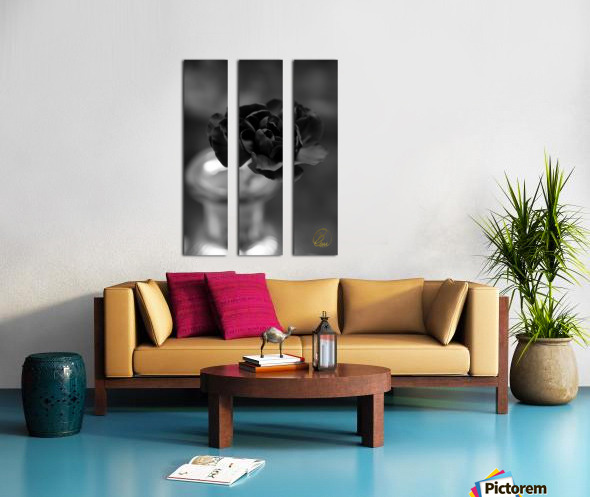 In an Instant  Split Canvas print