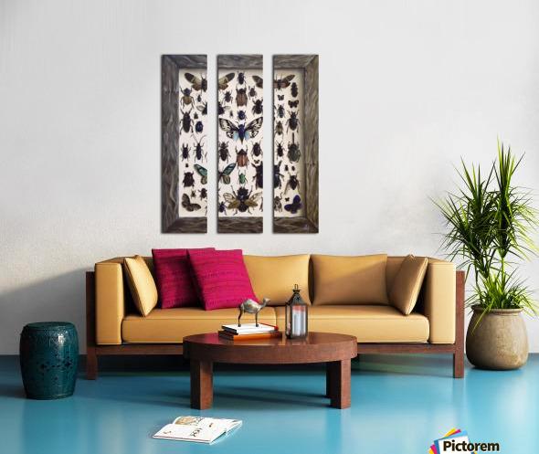 Beetles Split Canvas print