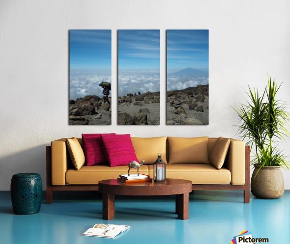 A7A60482 E274 493E A893 B801EB7EB298 Split Canvas print