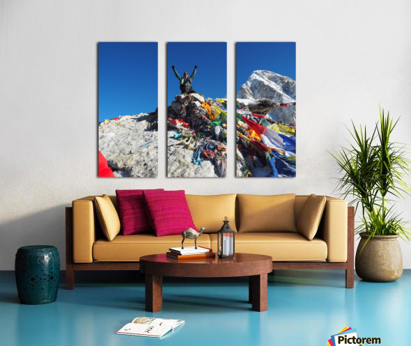 C19CE809 D88F 43E6 8A46 7F33E6E925A4 Split Canvas print