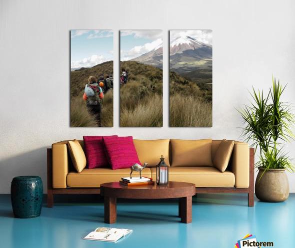 2CAEEB24 3011 46FC 848B 1952A02E0E6D 1 102 a Split Canvas print