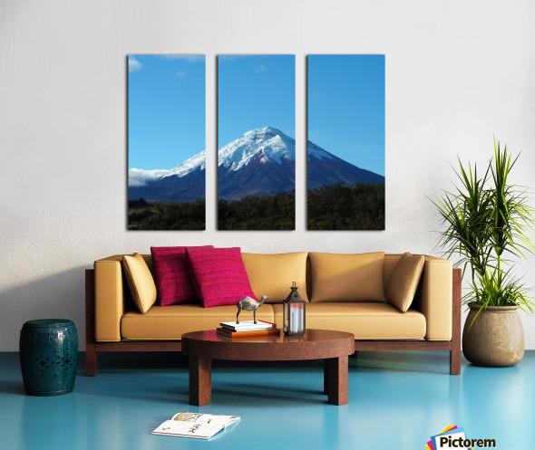 4AC2DAA8 F088 42F8 984A F2C96F02A281 Split Canvas print