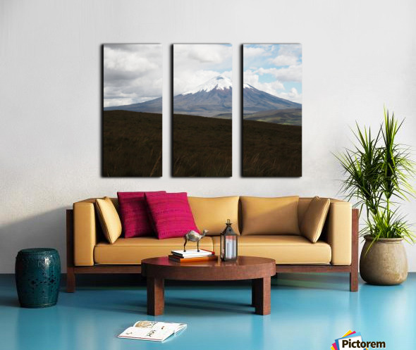 1748B712 BA68 4386 83ED 6D009210449E Split Canvas print
