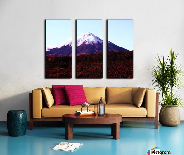 E5551BA9 0D0A 4BCE A22F 7C1BCD9EFC16 Split Canvas print