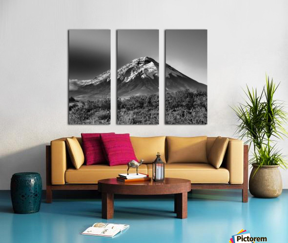 24810937 454A 4C55 B80D 39BE65C2F639 Split Canvas print