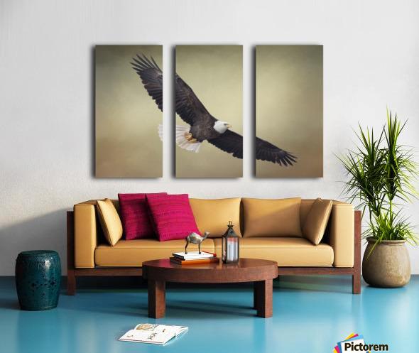 King of the Skies Split Canvas print