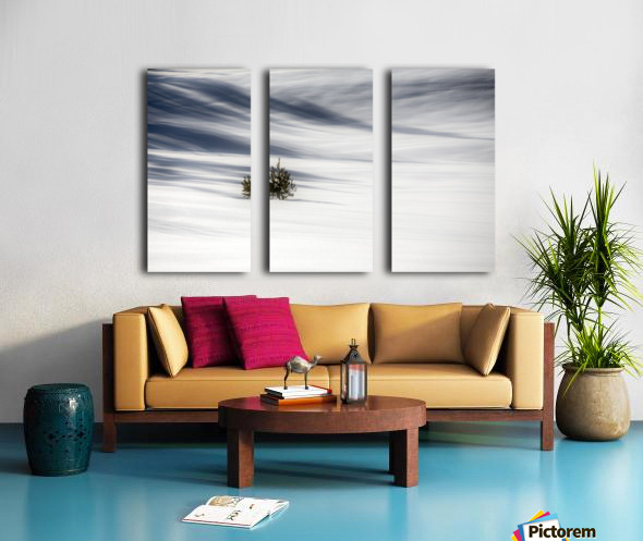Solitude Split Canvas print