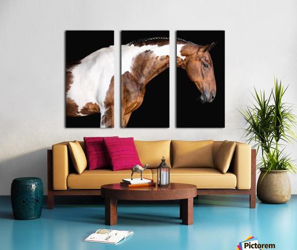 Paint Horse Portrait - Comanche Split Canvas print