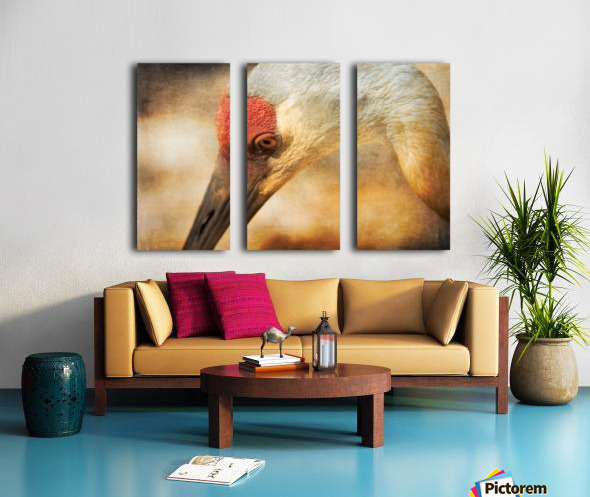 Solace Split Canvas print