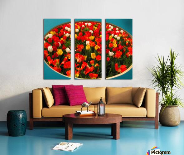 Parade of Tulips Split Canvas print