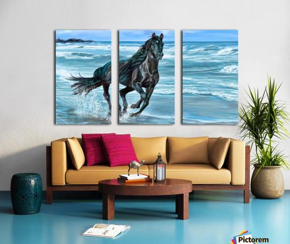 Black Beauty  Split Canvas print