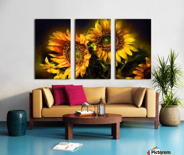 Little Suns Split Canvas print