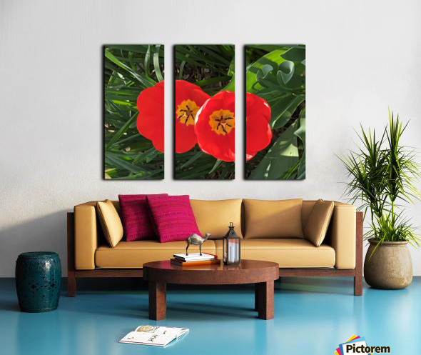 Twins Split Canvas print