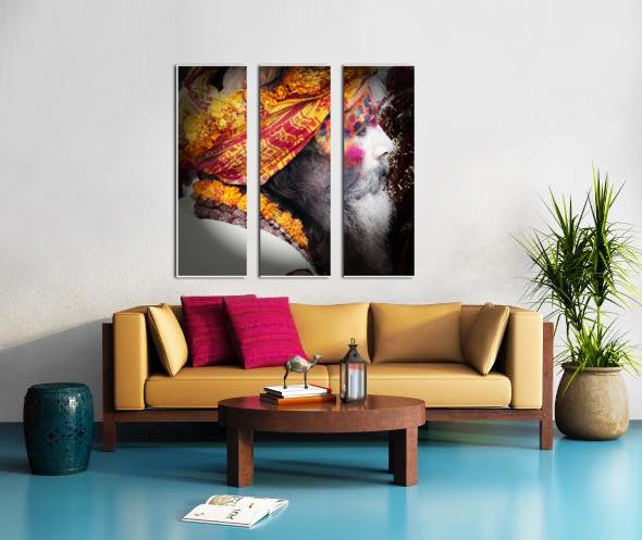 Priest India Split Canvas print