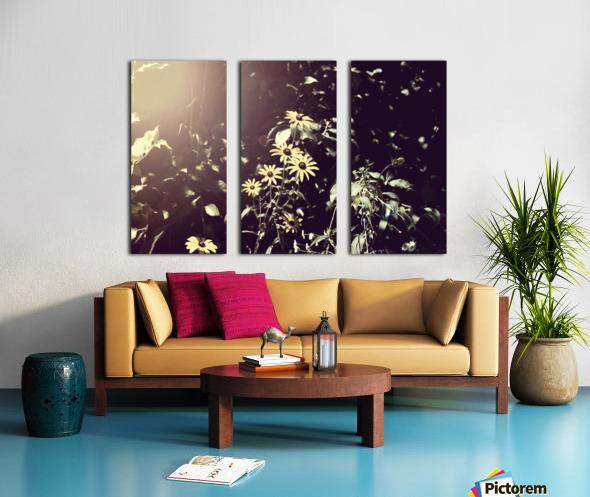 Shine On Me Split Canvas print