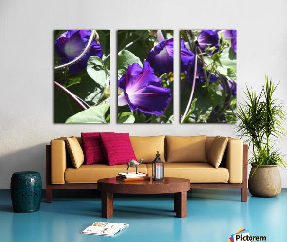 Deep Purple Split Canvas print