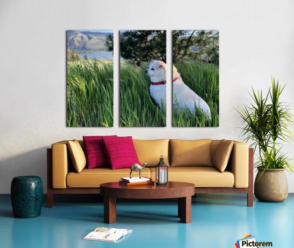 Blossom in Tall Grass Split Canvas print